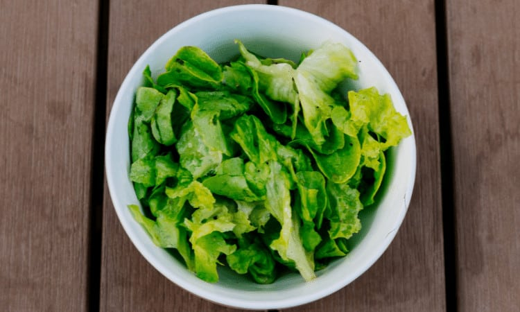 Can You Freeze Lettuce? (Explained)